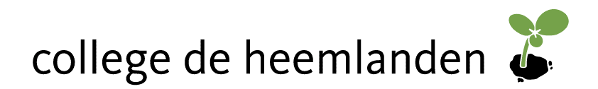 Logo Docent Beeldende Vorming Tweedegraads