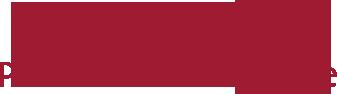 Logo Docent Beeldende Kunst en Vormgeving
