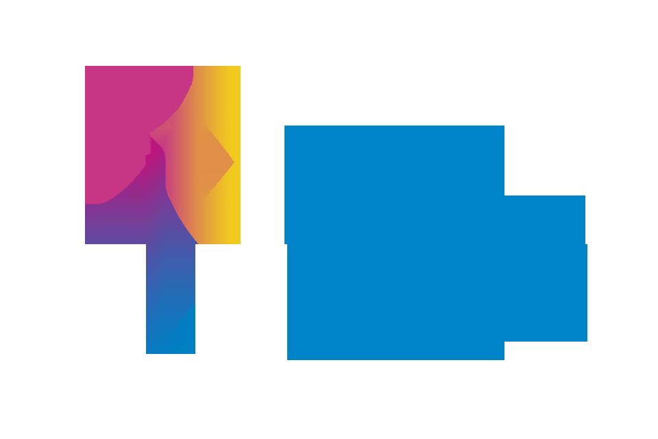 Logo Docent Natuurkunde 1e Graads